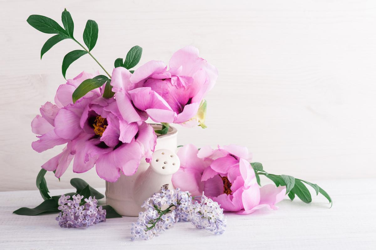Florile binelui