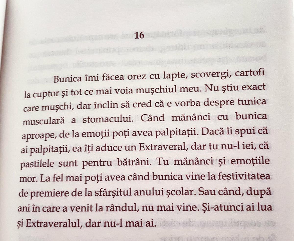 Dragă inimă carte Vasi Radulescu